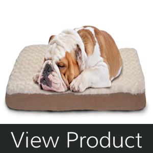 best dog beds for 2017 | give your dog the break it deserves