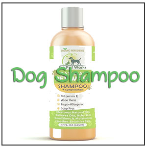 best dog shampoo
