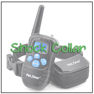 best shock collar