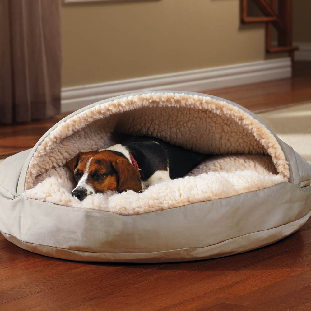 How to Air Condition Your Dogs House